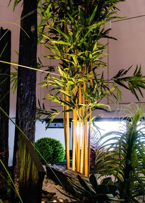 jardin anais - lyon-7